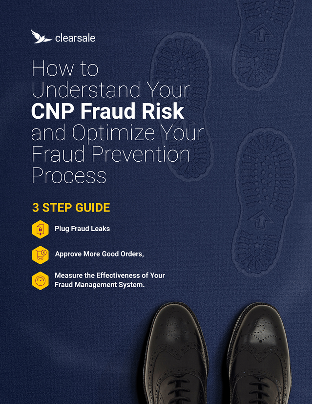CNP Fraud Risk Assessment e-book.png